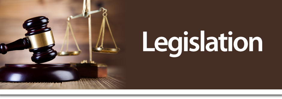 Legislation and surrogacy services